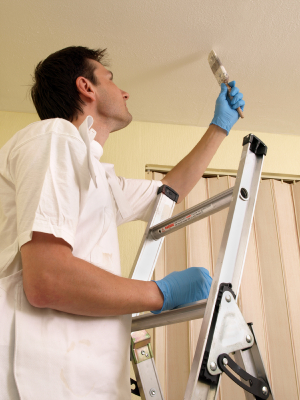 Geno S Painting Painting Contractor Michigan Painting